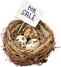 image of a nest with a For Sale sign in it